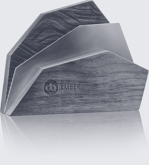 Digital Alberta Ember Award - Black and White - For Web Design and Animation project: KidClot