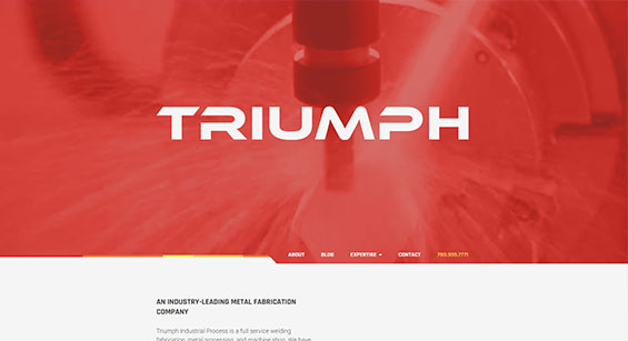Triumph Website Development by SAVIAN