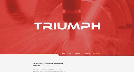 Triumph Website Development by SAVIAN